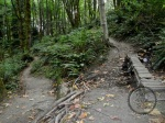 IMBA Trail's u-turn