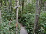 South end of IMBA Trail